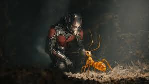 Ant Man Captions